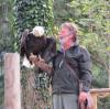 Falkner mit Weisßkopfseeadler auf der Hand