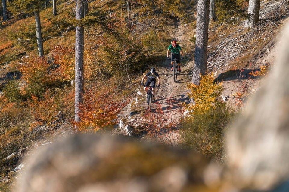 2 Männer fahren Mountainbike