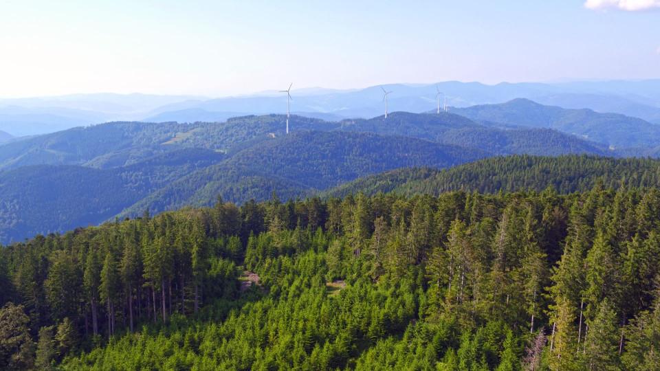 Landschaftsild mit Blick auf den Karlstein in Hornberg-Niederwasser