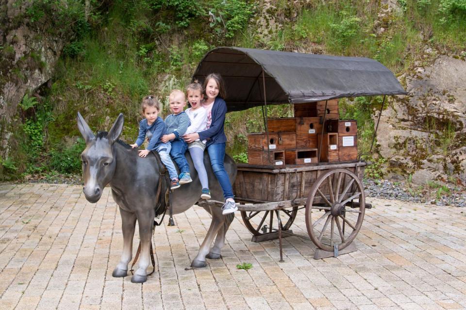 4 Kinder sitzen auf einem Esel mit Krämerkarren