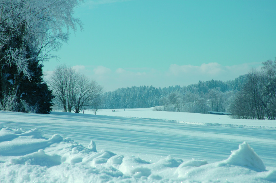 Landschaftsbild vom Fohrenbühl mit Schnee