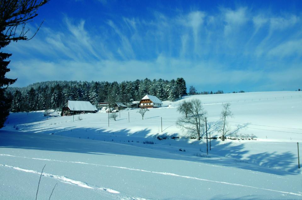 Verschneite Landschaft mit zwei Bauernhöfen in Hornberg-Reichenbach