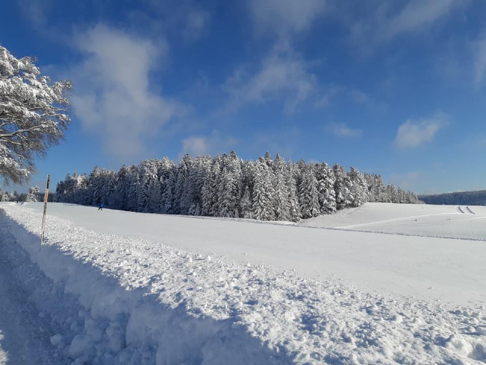 Verschneite Winterlandschaft auf dem Fohrenbühl